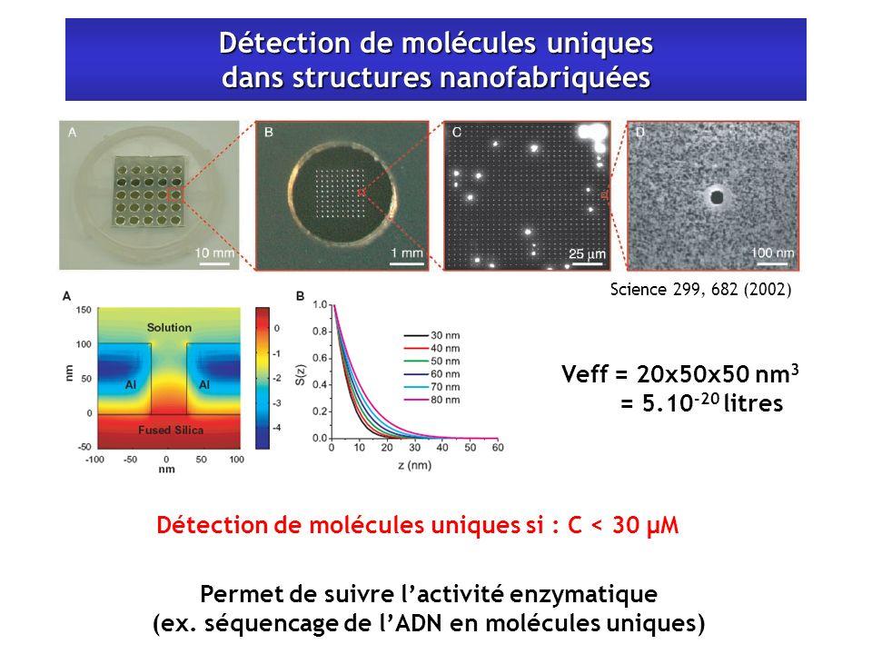 Détection de molécules uniques dans structures nanofabriquées