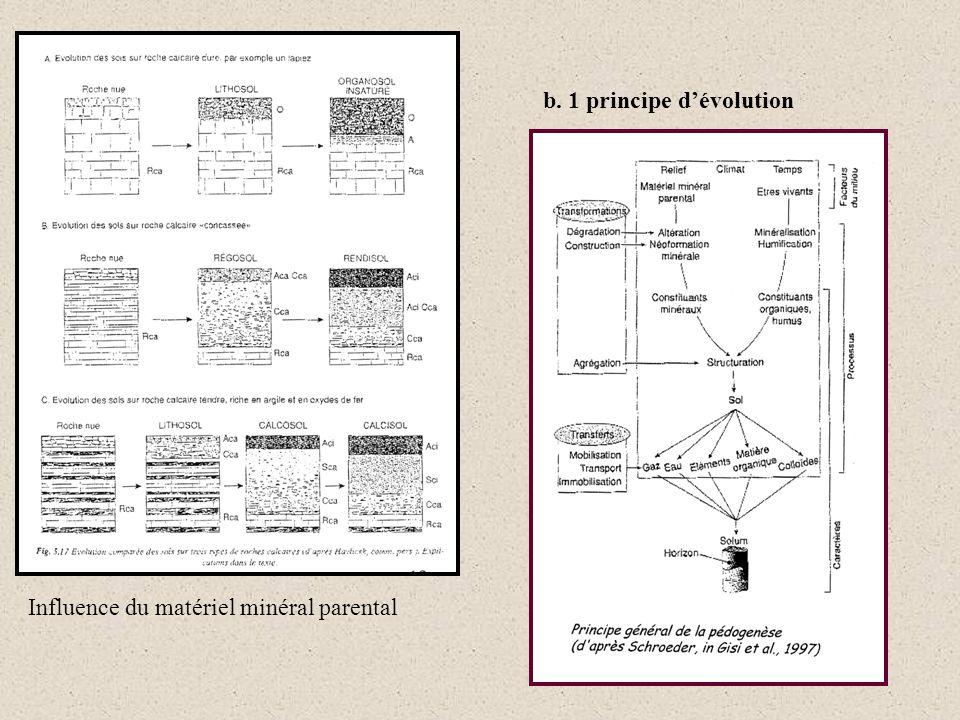 b. 1 principe d'évolution