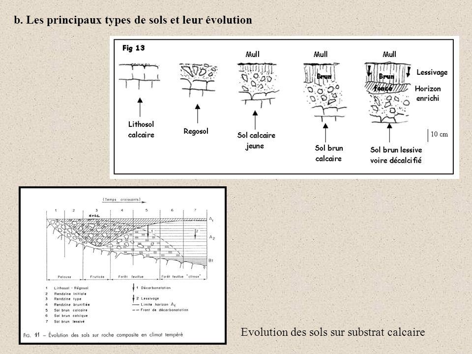 b. Les principaux types de sols et leur évolution