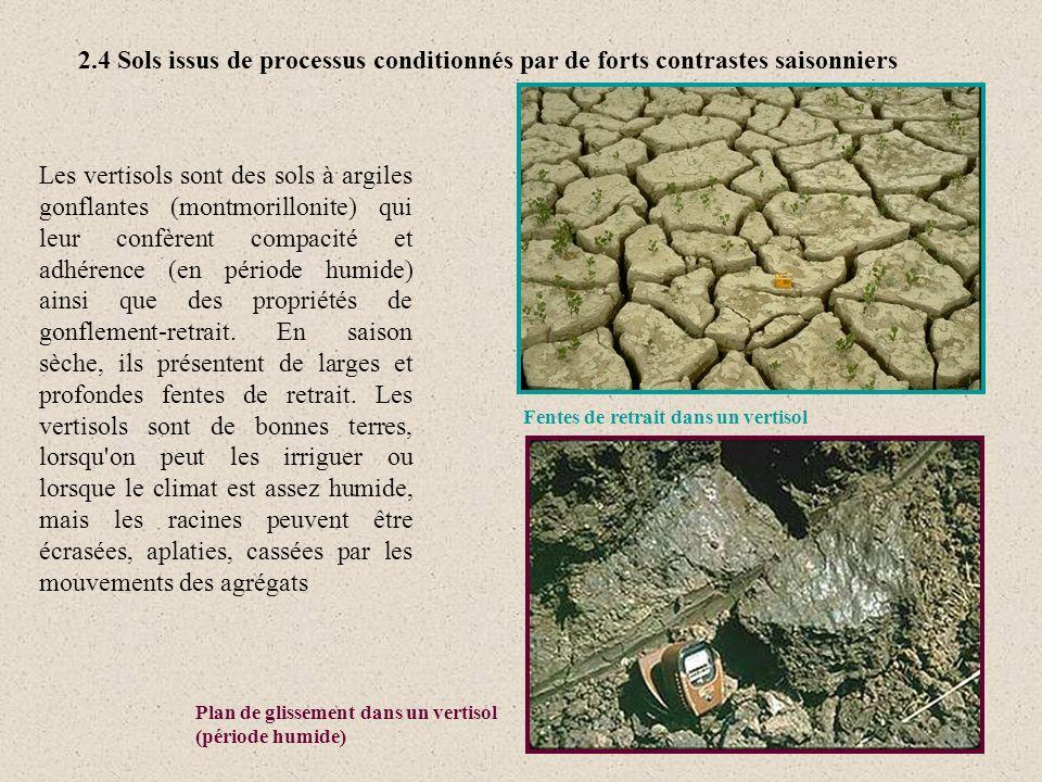 2.4 Sols issus de processus conditionnés par de forts contrastes saisonniers