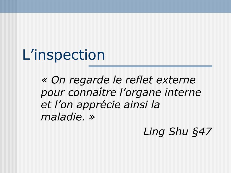 L'inspection « On regarde le reflet externe pour connaître l'organe interne et l'on apprécie ainsi la maladie. »