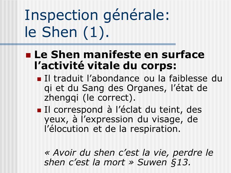Inspection générale: le Shen (1).