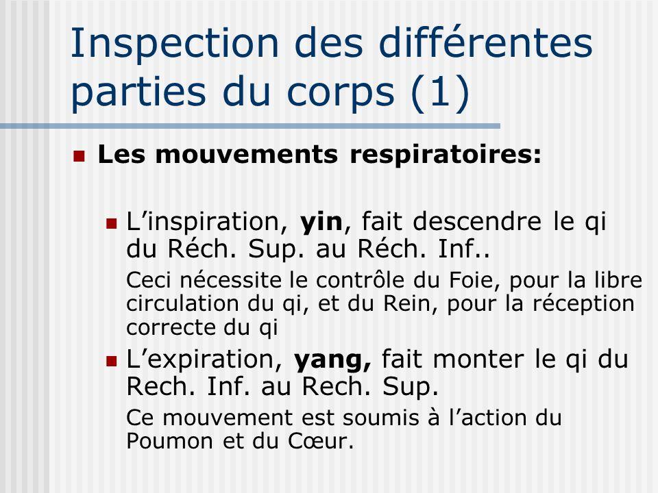 Inspection des différentes parties du corps (1)