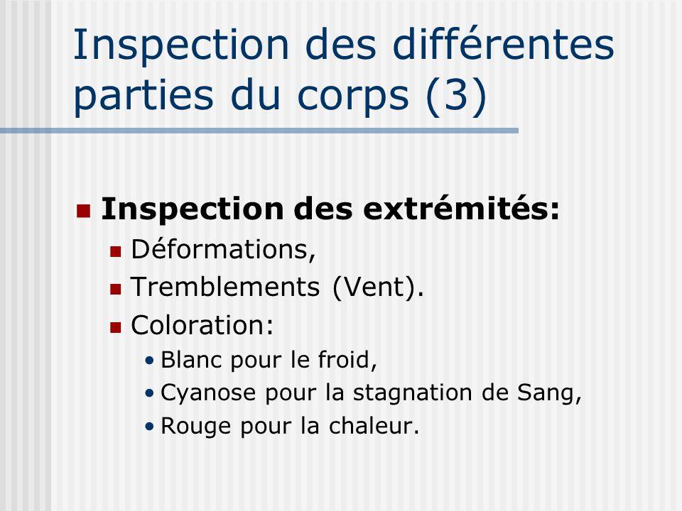 Inspection des différentes parties du corps (3)