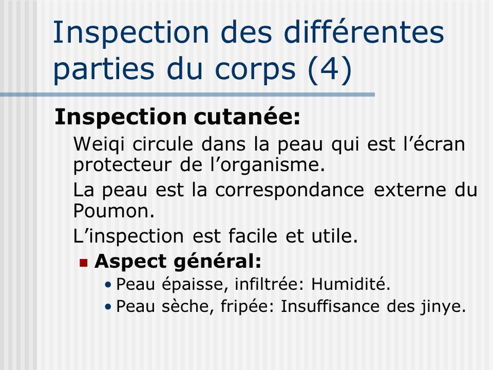 Inspection des différentes parties du corps (4)