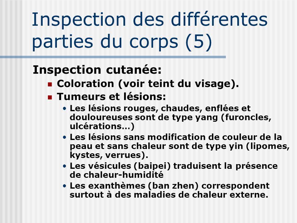 Inspection des différentes parties du corps (5)