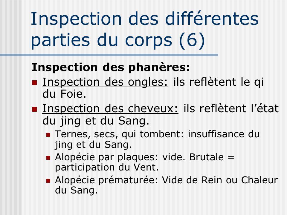 Inspection des différentes parties du corps (6)
