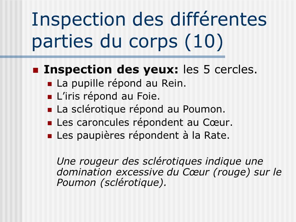 Inspection des différentes parties du corps (10)