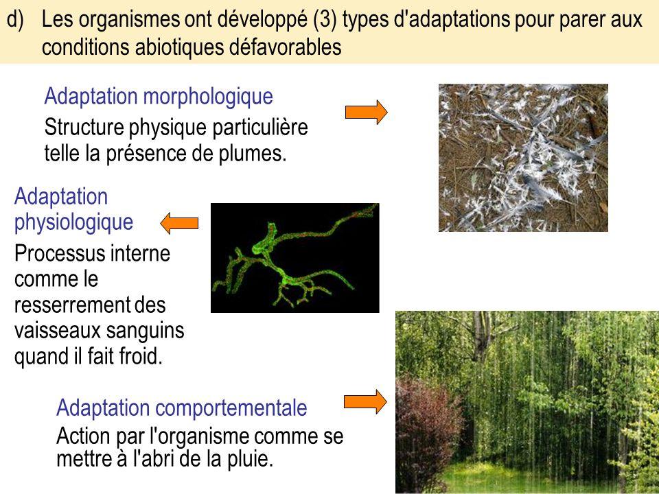 d) Les organismes ont développé (3) types d adaptations pour parer aux conditions abiotiques défavorables