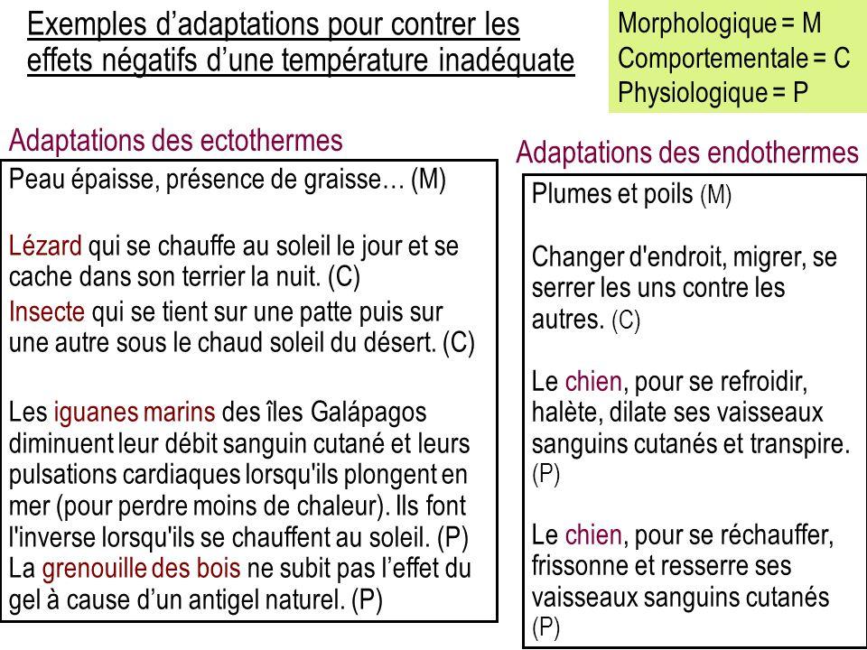 Exemples d'adaptations pour contrer les effets négatifs d'une température inadéquate