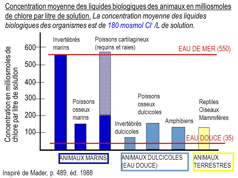 Concentration en milliosmoles de chlore par litre de solution