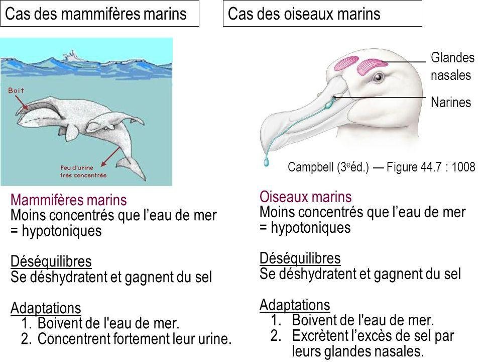 Cas des mammifères marins Cas des oiseaux marins