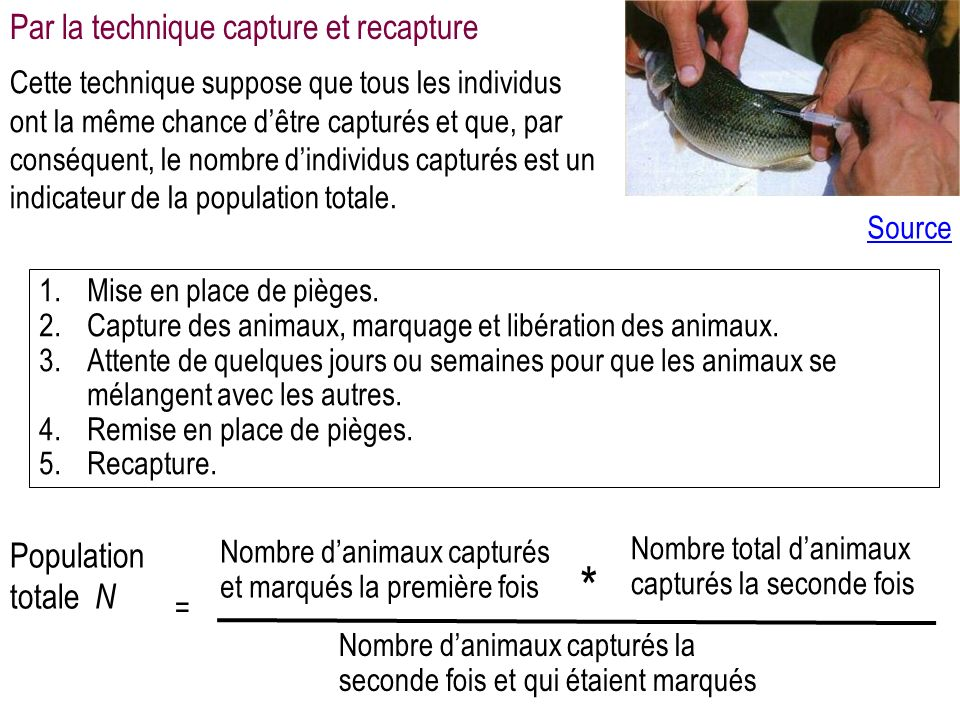 * Par la technique capture et recapture Population totale N