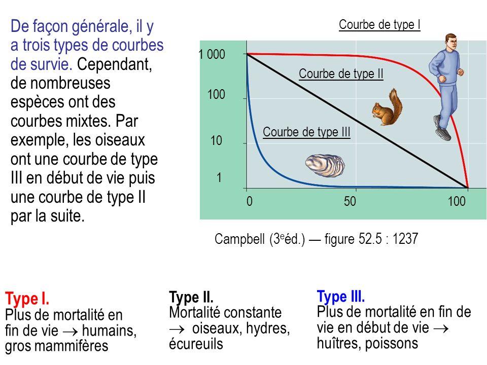 De façon générale, il y a trois types de courbes de survie