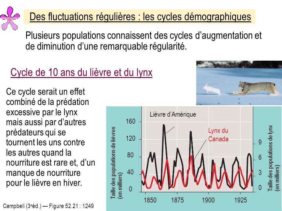 Des fluctuations régulières : les cycles démographiques