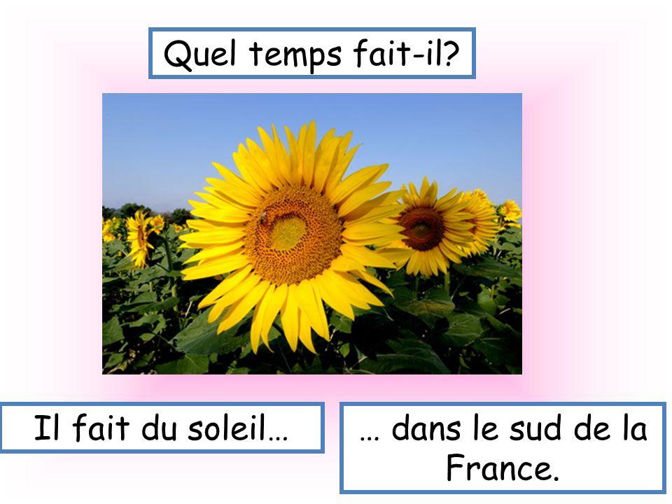 … dans le sud de la France.