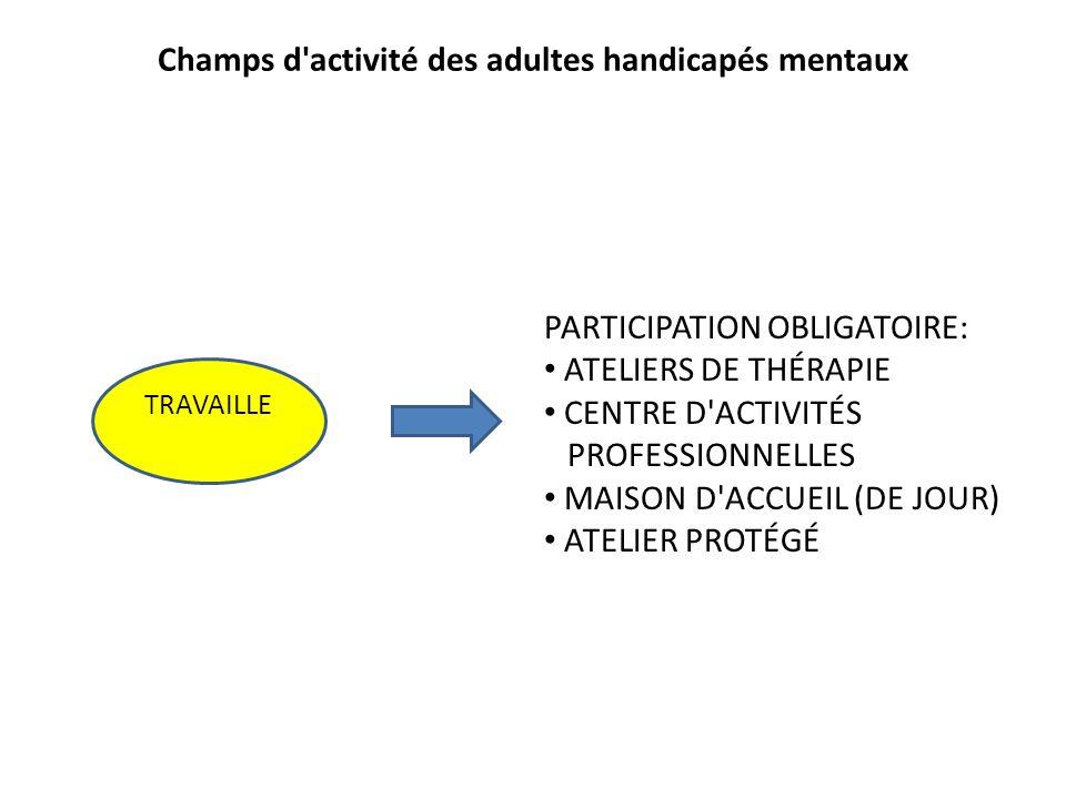 Champs d activité des adultes handicapés mentaux