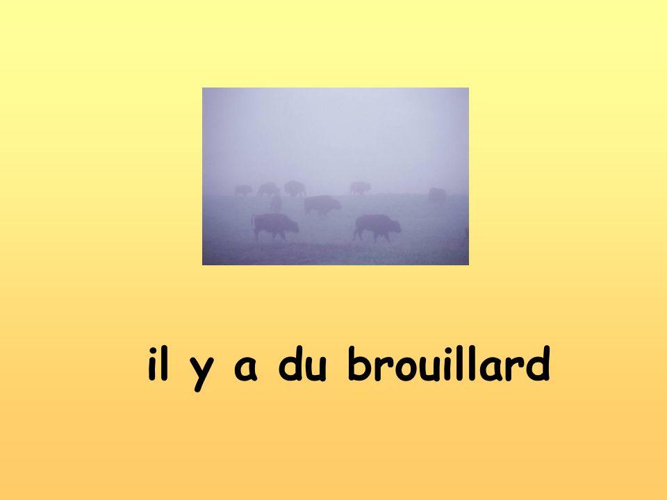 il y a du brouillard