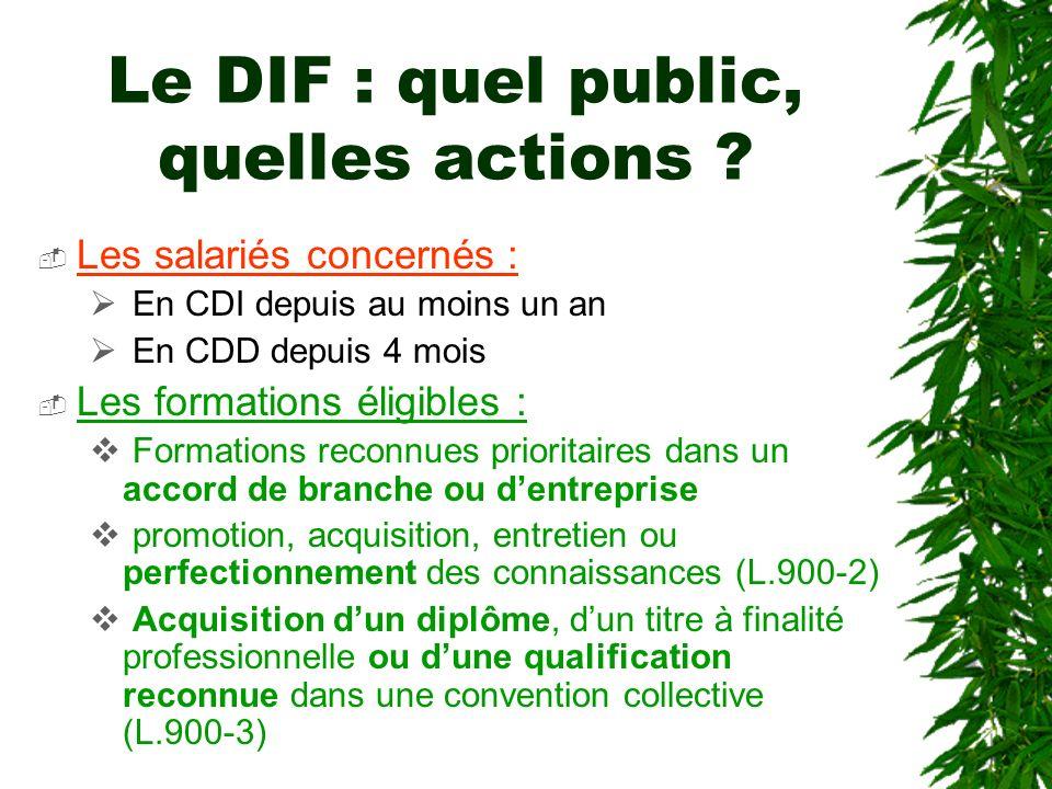 Le DIF : quel public, quelles actions
