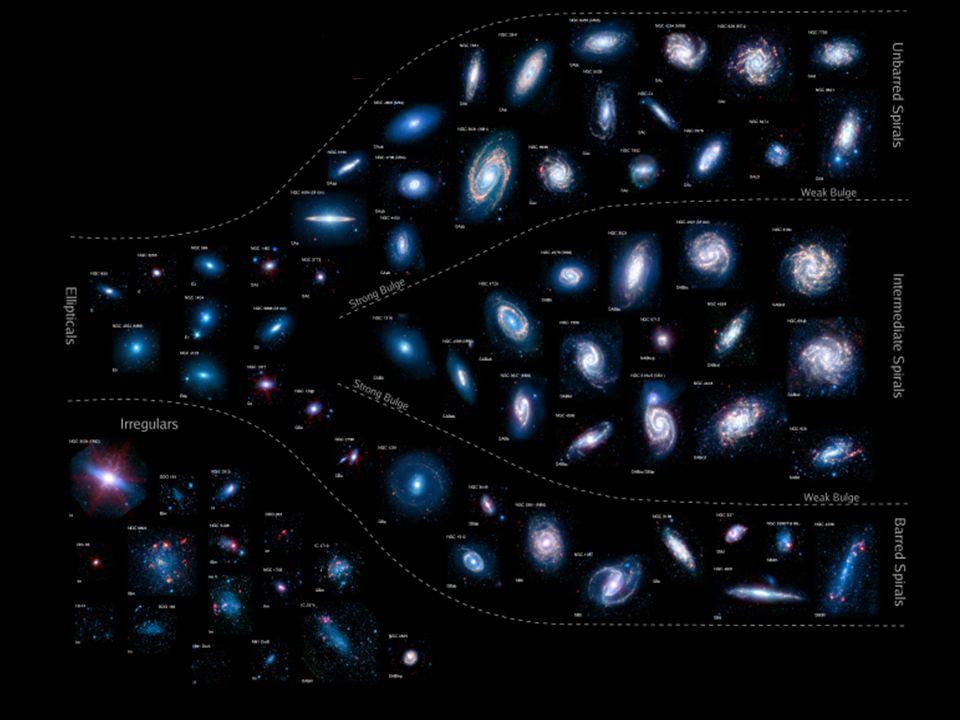 Ces galaxies ont toutes sortes de formes/morphologies entre : les irregulieres riches en gaz - les spirales avec des bras spiraux plus ou moins ouverts ou fermes, et de plus ou moins nombreux,