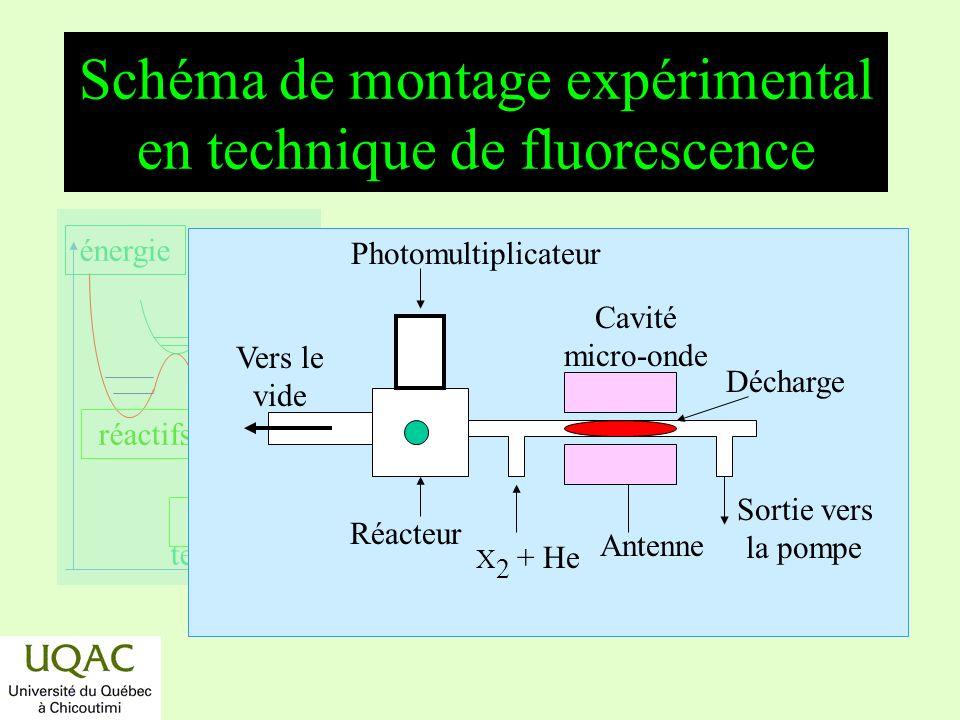 Schéma de montage expérimental en technique de fluorescence