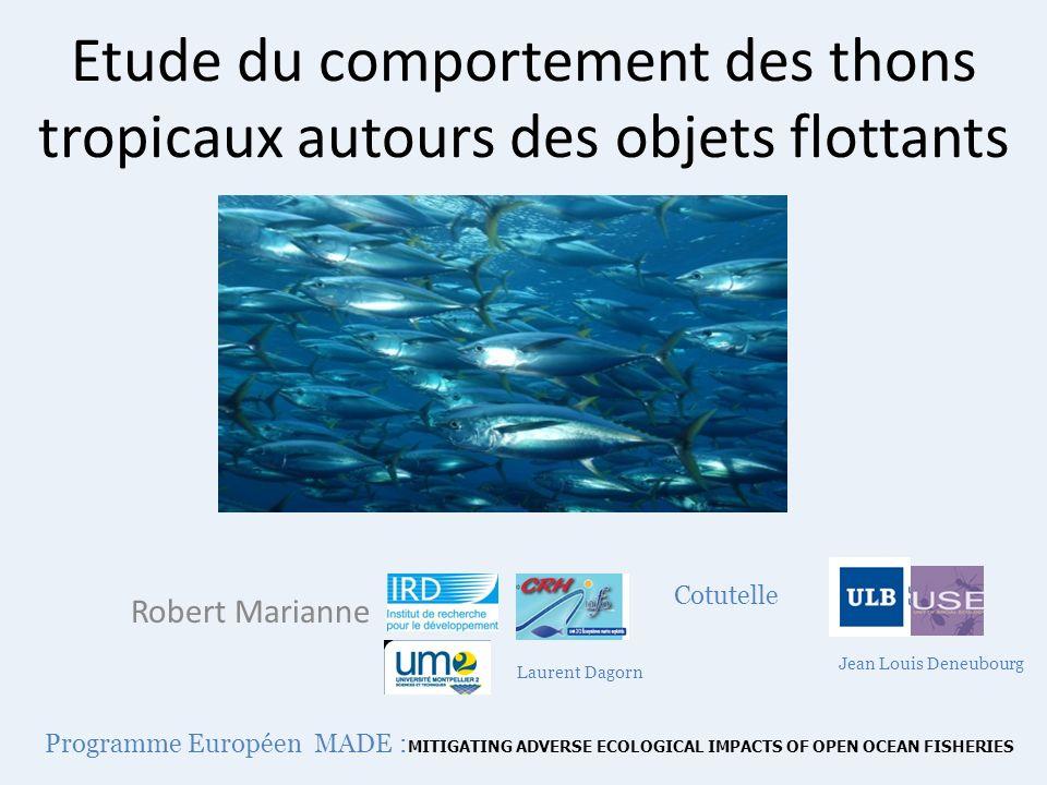 Etude du comportement des thons tropicaux autours des objets flottants