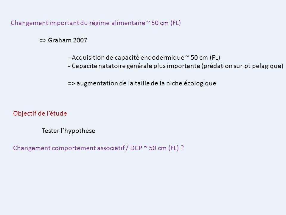 Changement important du régime alimentaire ~ 50 cm (FL)