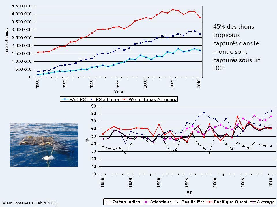 45% des thons tropicaux capturés dans le monde sont capturés sous un DCP
