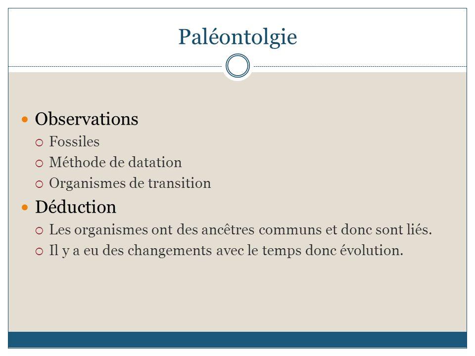 Paléontolgie Observations Déduction Fossiles Méthode de datation