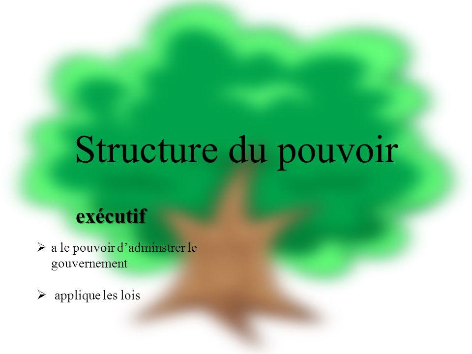 Structure du pouvoir exécutif