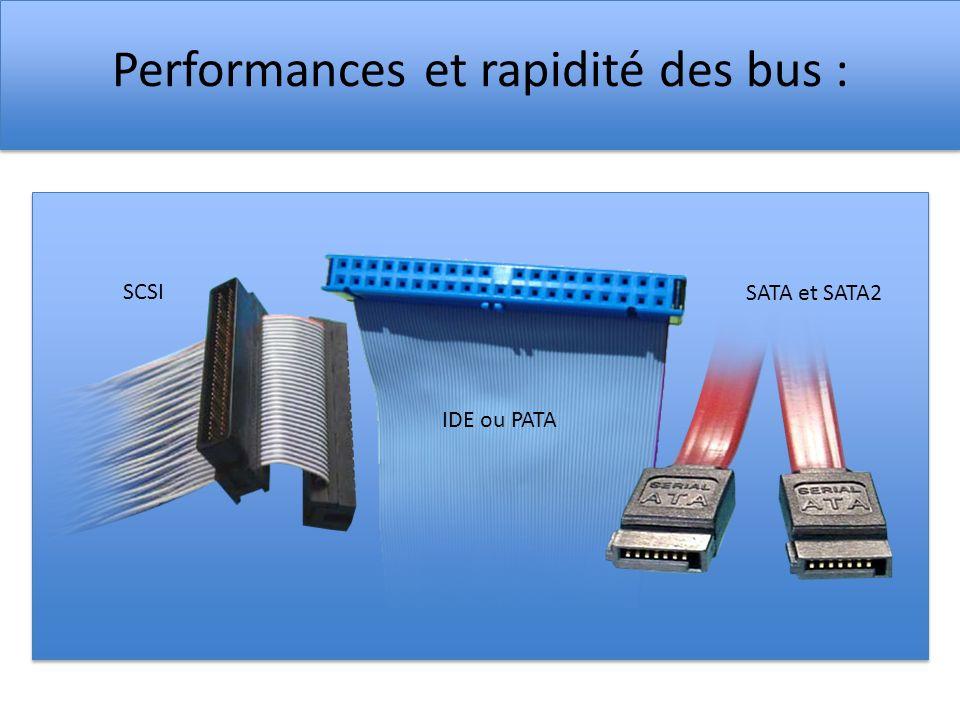 Performances et rapidité des bus :
