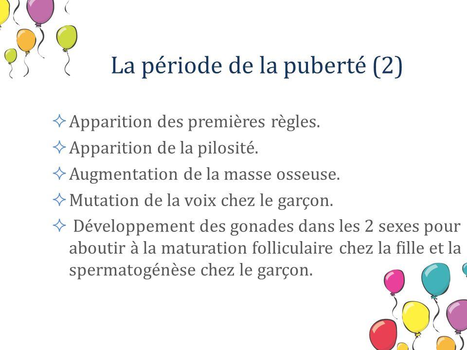 La période de la puberté (2)