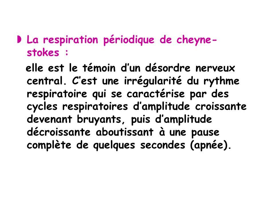 La respiration périodique de cheyne-stokes :