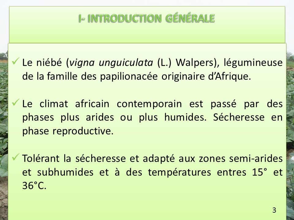 I- INTRODUCTION GÉNÉRALE