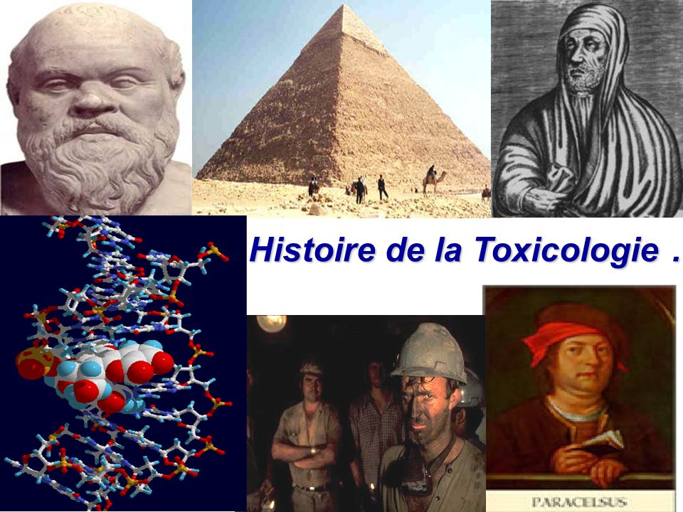 Histoire de la Toxicologie …