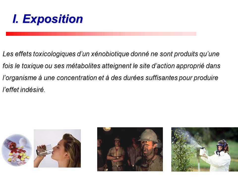 I. Exposition
