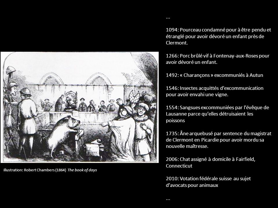 1266: Porc brûlé vif à Fontenay-aux-Roses pour avoir dévoré un enfant.