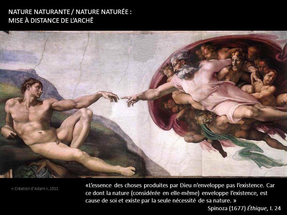 nature naturante / nature naturée : mise à distance de l'archê