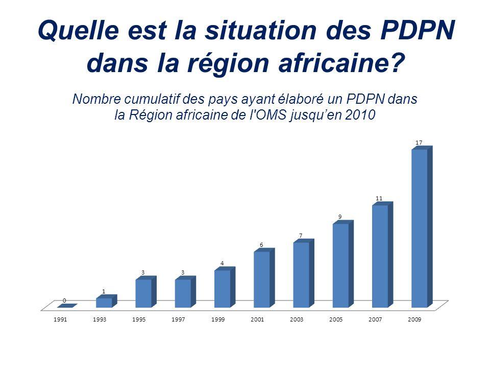 Quelle est la situation des PDPN dans la région africaine