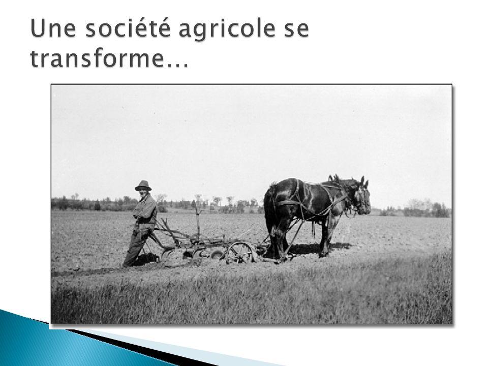Une société agricole se transforme…