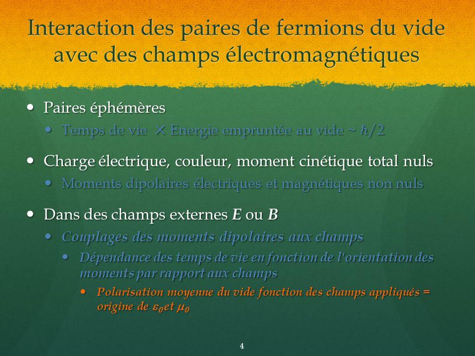 Interaction des paires de fermions du vide avec des champs électromagnétiques