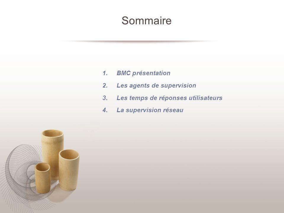 Sommaire BMC présentation Les agents de supervision