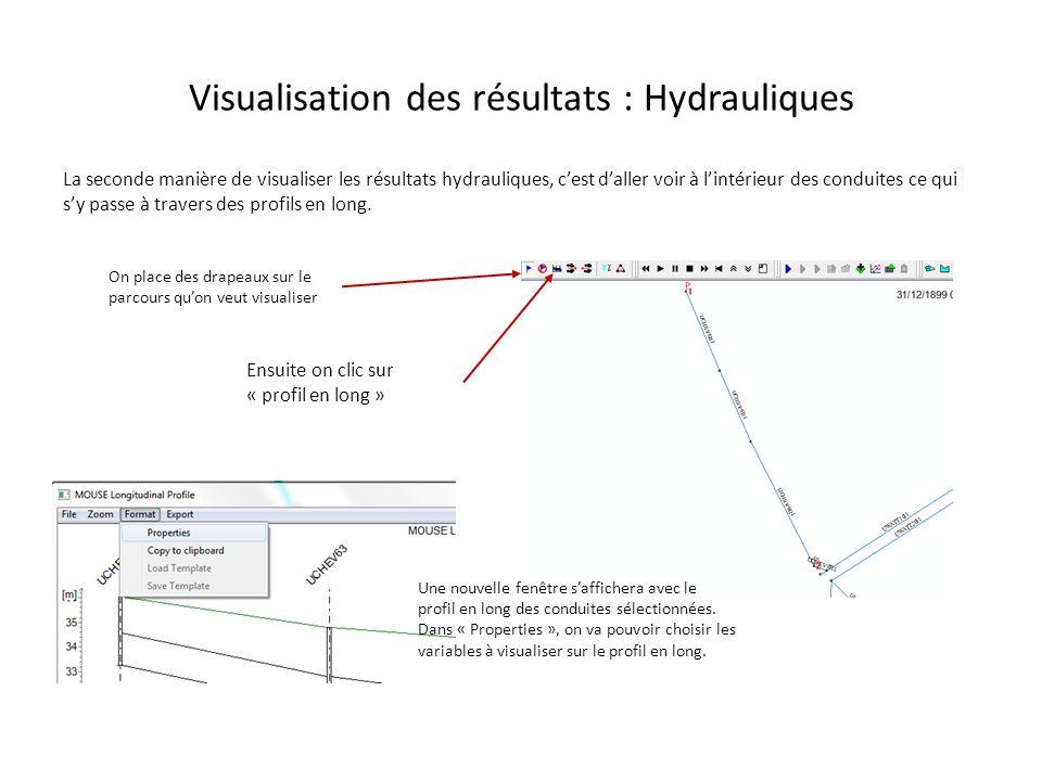 Visualisation des résultats : Hydrauliques
