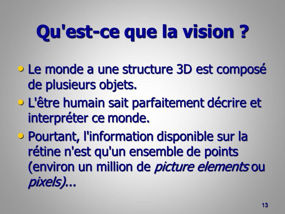 Qu est-ce que la vision Le monde a une structure 3D est composé de plusieurs objets.