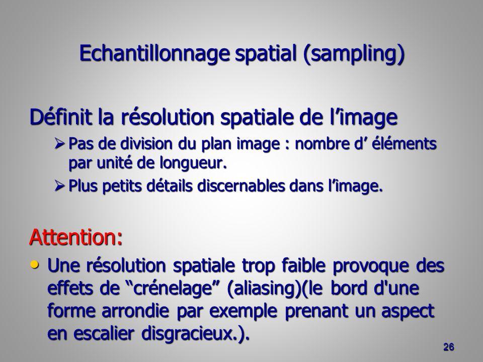 Echantillonnage spatial (sampling)