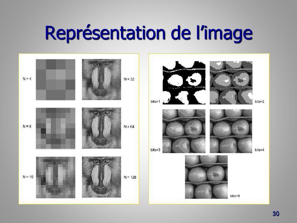 Représentation de l'image