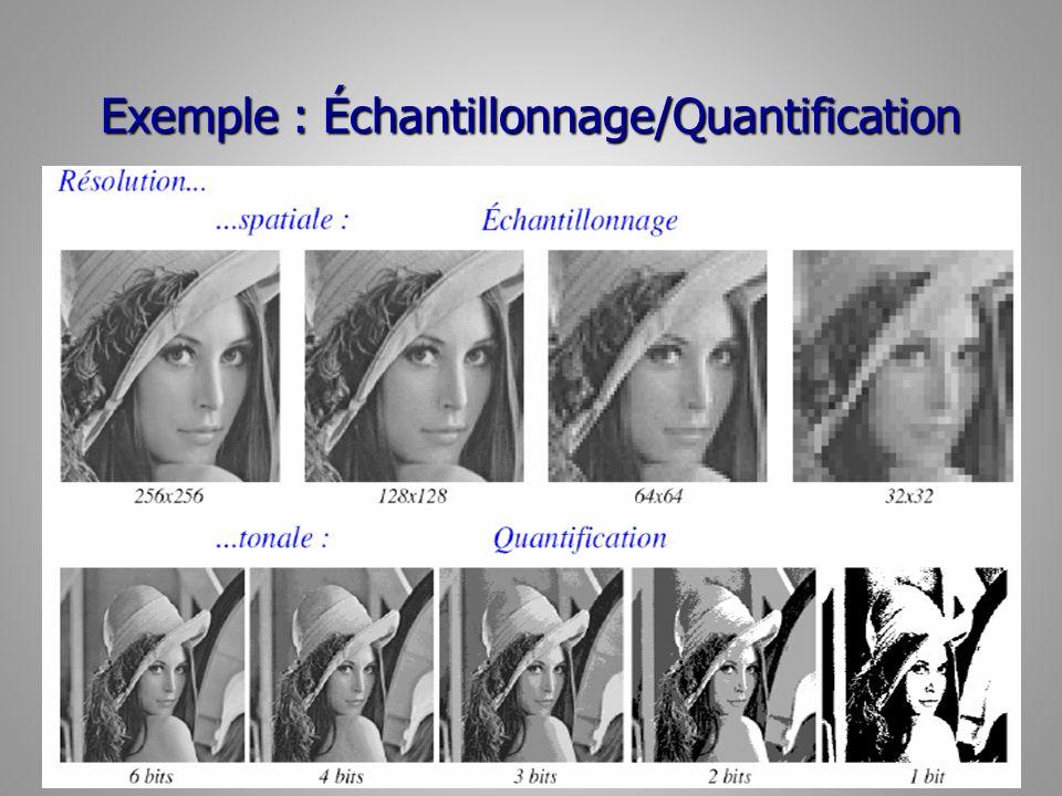 Exemple : Échantillonnage/Quantification