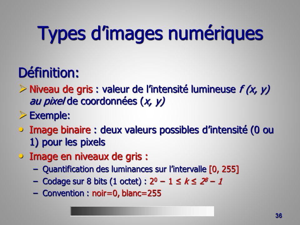 Types d'images numériques