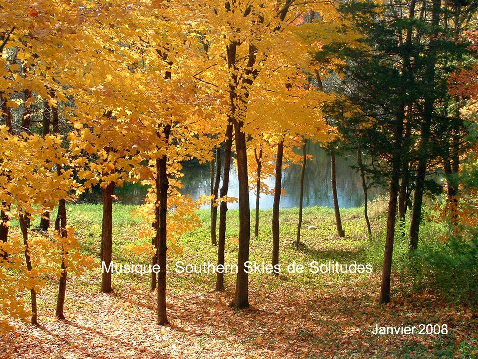 Musique : Southern Skies de Solitudes