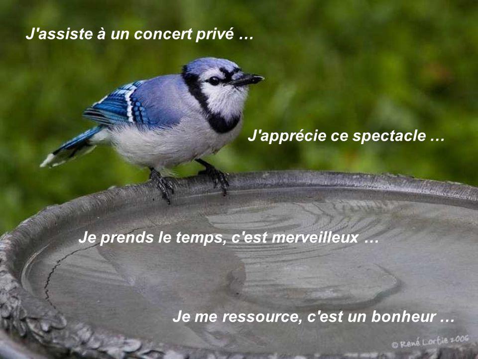 J assiste à un concert privé …